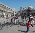 Альбом:  Venice